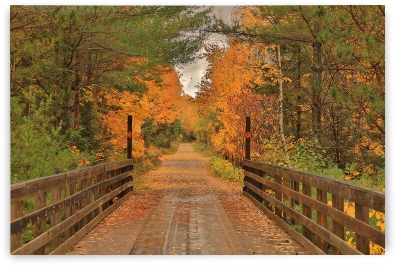 A Bridge into Autumn by Bern E King Photography