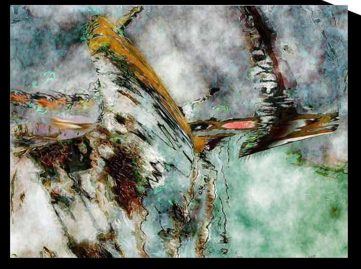 Takeoff by Helmut Licht