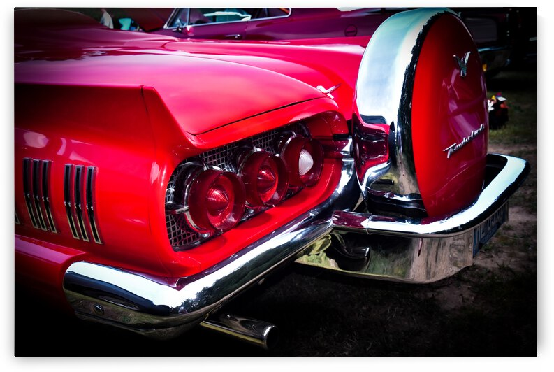 Thunderbird in Red by John Myers