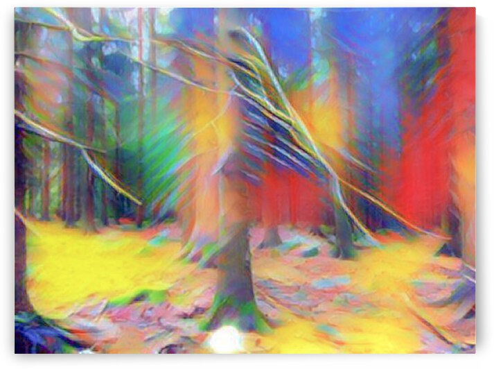 dreamy forest by Magicifa  Ifat Porat