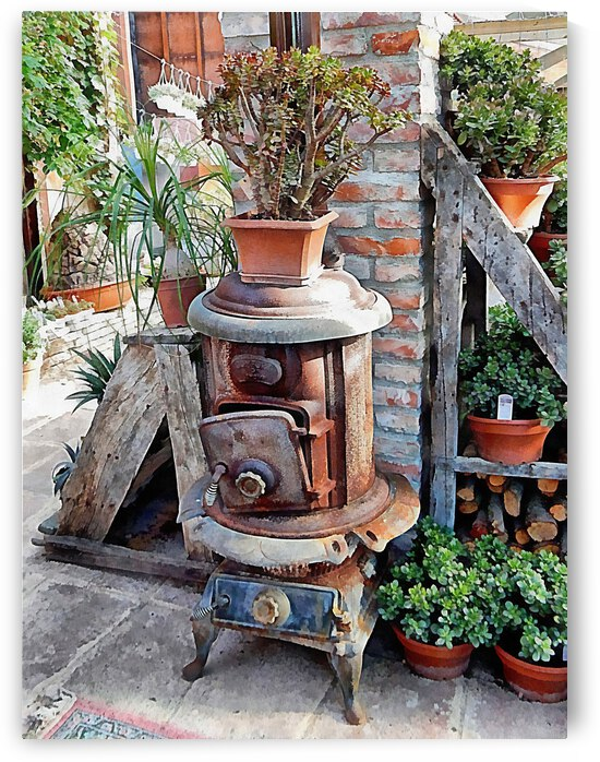 Old Wood Stove With Succulents by Dorothy Berry-Lound