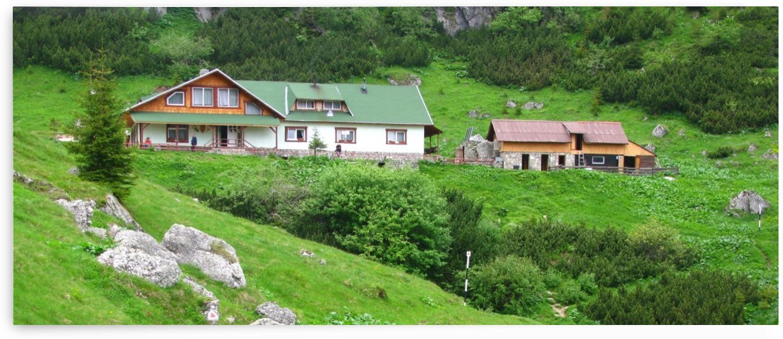 Malaiesti cabin in Romania by Vlad Radulian
