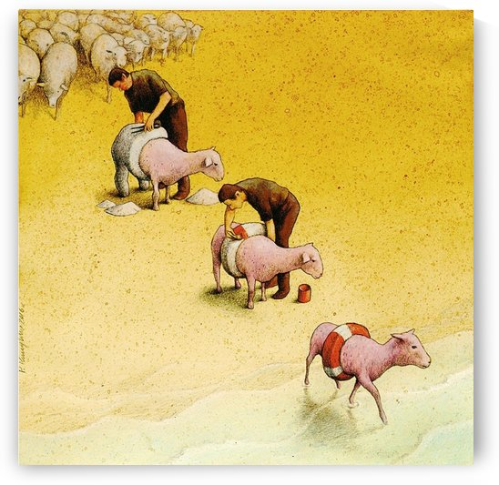 Sheep by Pawel Kuczynski