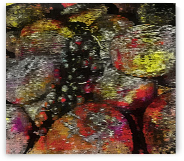 Pecorino Cheese And Black Grapes Abstracted by Dorothy Berry-Lound