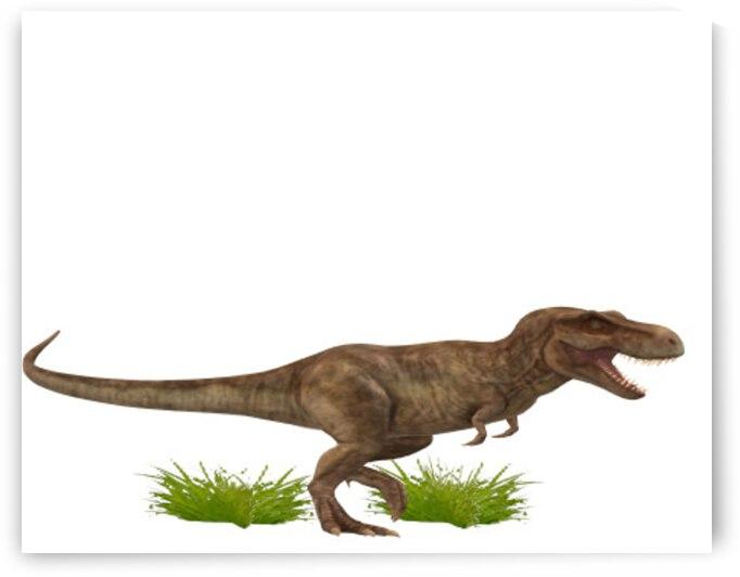 Tyrannosaurus rex by Eliel