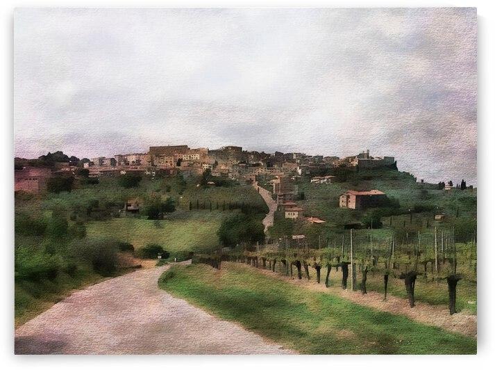 Vineyard View Near Chiusi Chianciano Tuscany by Dorothy Berry-Lound