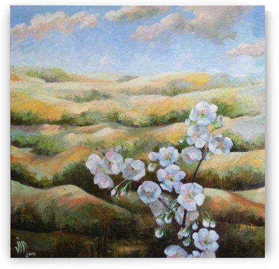 spring valley 1 by Vali Irina Ciobanu by vali irina ciobanu
