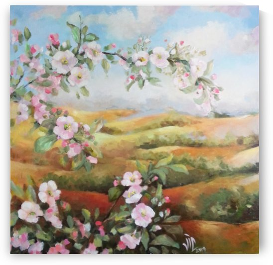 spring valley 2  by Vali Irina Ciobanu by vali irina ciobanu