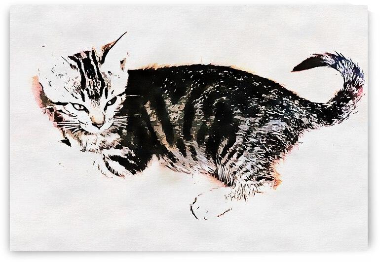 Kitten Attitude 2 by Dorothy Berry-Lound
