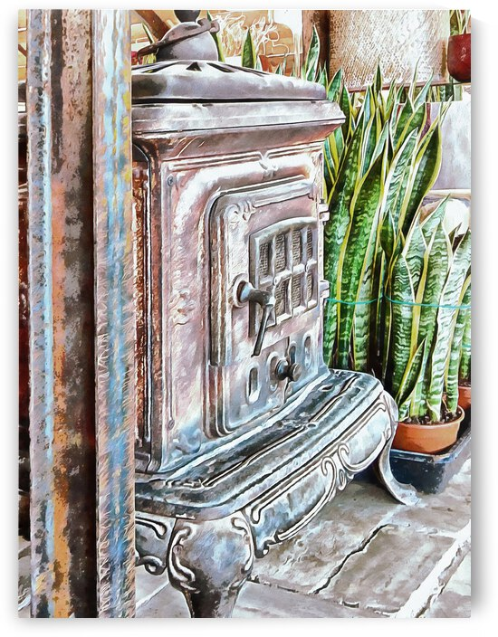 Old Wood Burning Stove With Snake Plants by Dorothy Berry-Lound