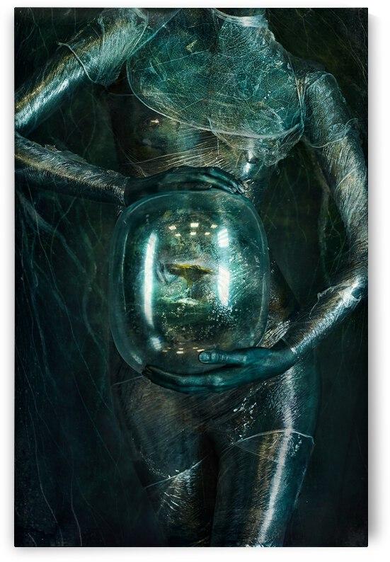 inhabitant by Ivan Kovalev