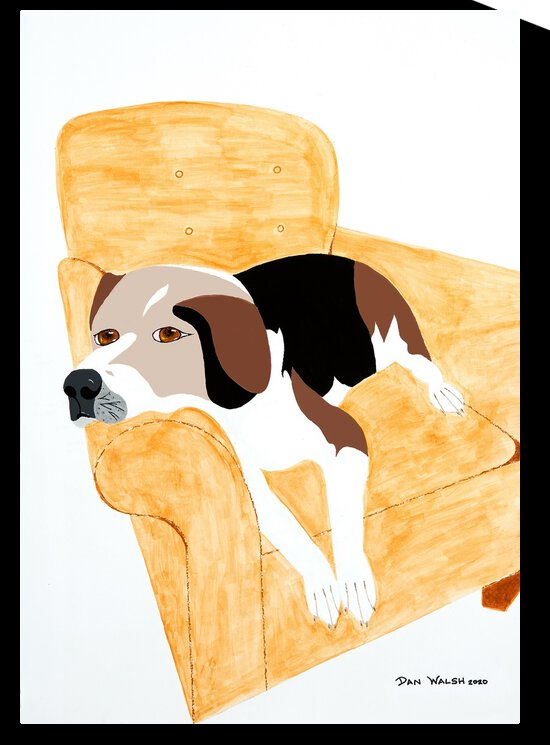 Coon Hound Dog on a chair    by Candace Frankland