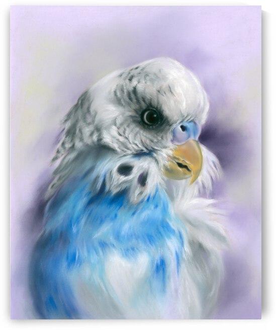 Blue Parakeet Bird Portrait by MM Anderson