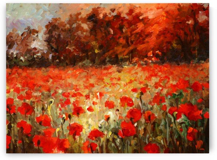 poppy field at sunset  by Vali Irina Ciobanu by vali irina ciobanu