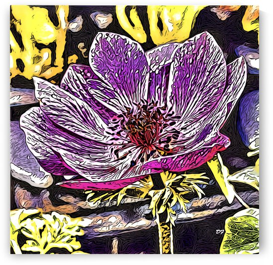 Gracious Purple_IMG 6481_cartoon modern style by Darrell L Foltz