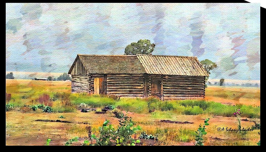 Mormon Row Cabin  Jackson Wyoming by Aurelia Schanzenbacher Sisters Fine Arts
