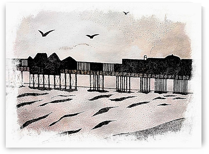 Brighton Pier With Seagulls by Dorothy Berry-Lound