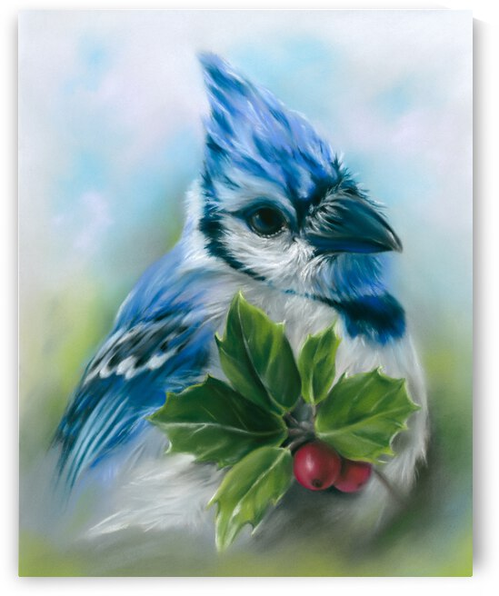 Blue Jay with Holly by MM Anderson