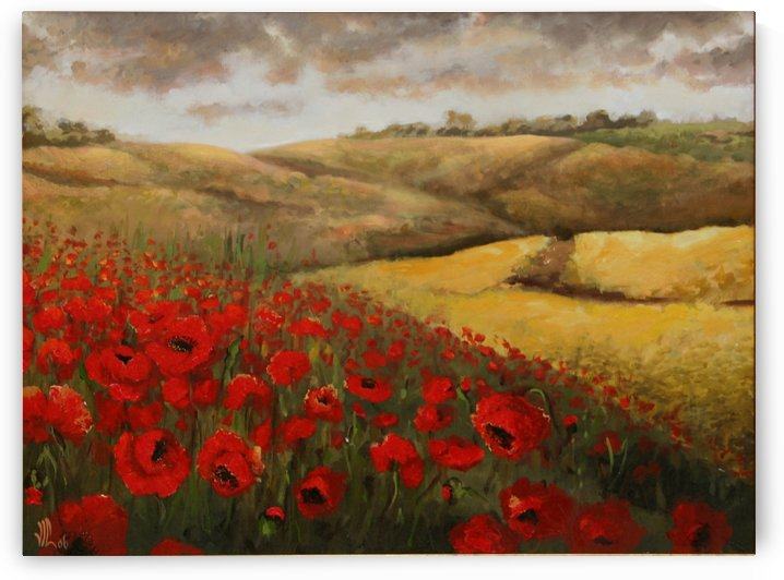poppy field  by Vali Irina Ciobanu by vali irina ciobanu