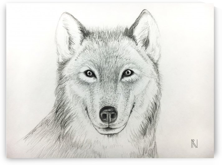 Wolf by Aria