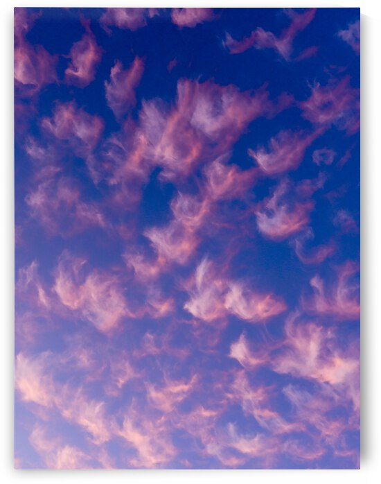Pink and White Cotton Candy Skies over the Pacific Northwest 2 of 2   Abstract Expressionist Robert Stanek Original by 1North