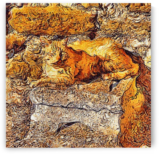 Surreal Ginger Cat Blending In by Dorothy Berry-Lound