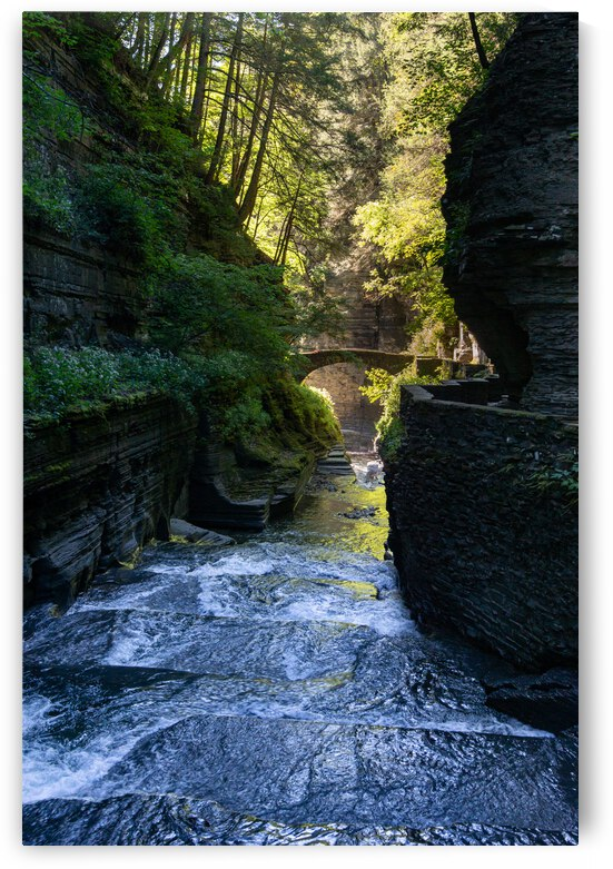 Through the Gorge 1 by Dimitry Papkov