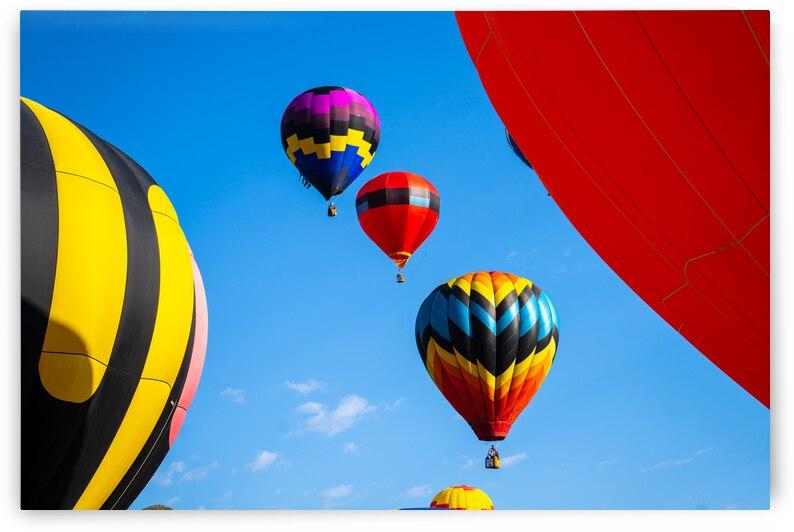 Balloon Festival Snowmass Colorado by Dave Massender