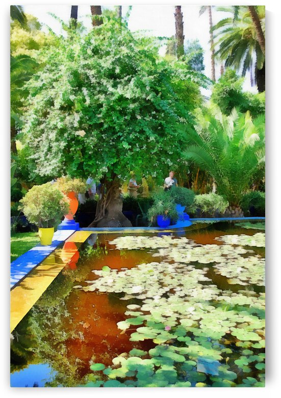 Lily Pond With Reflections Marrakesh by Dorothy Berry-Lound