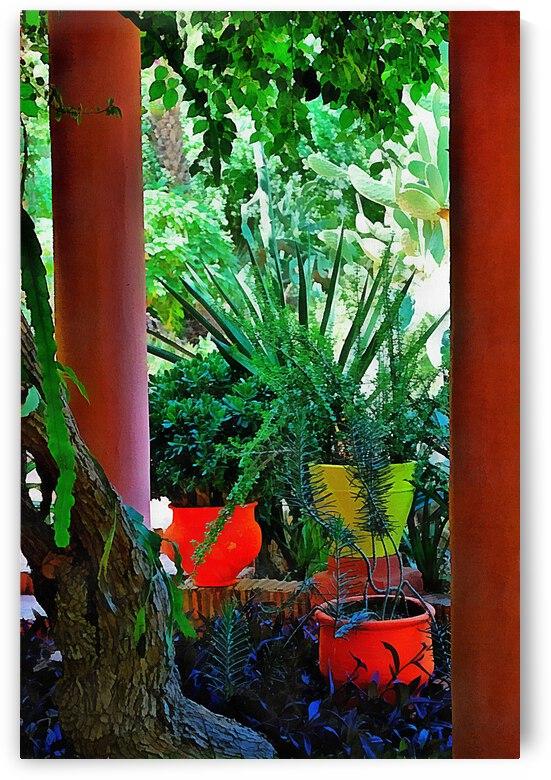 Botanical Studies In Orange Marrakesh by Dorothy Berry-Lound