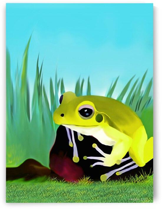Stoney Creek Frog by Natasha McGhie