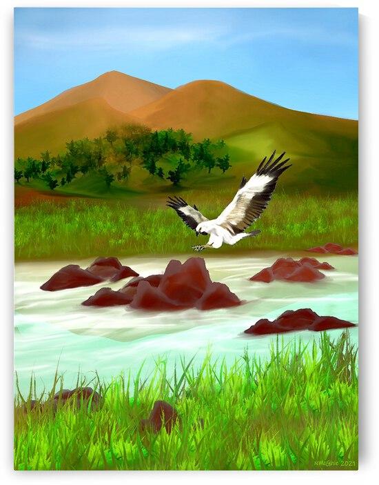 Sea Eagle Landing by Natasha McGhie