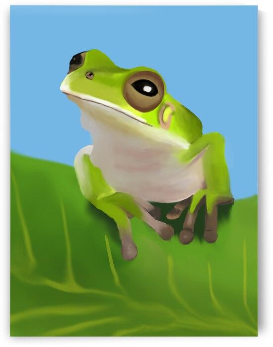 Green Tree Frog by Natasha McGhie