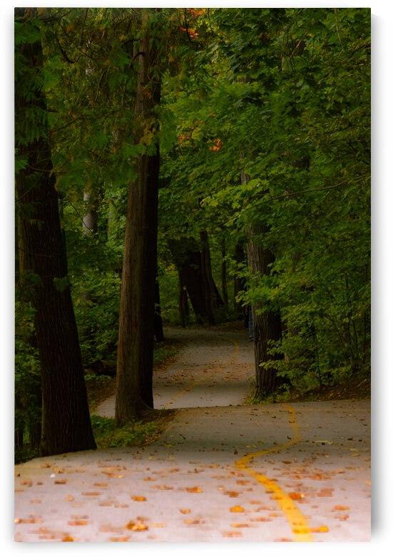 Early Autumn by Monica Roberts Photography
