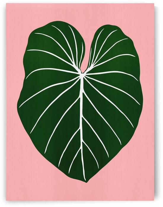 Leaf 01 by Vitor Costa