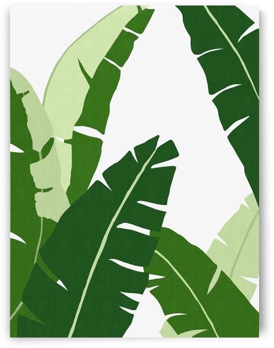 Tropical Leaf 15 by Vitor Costa