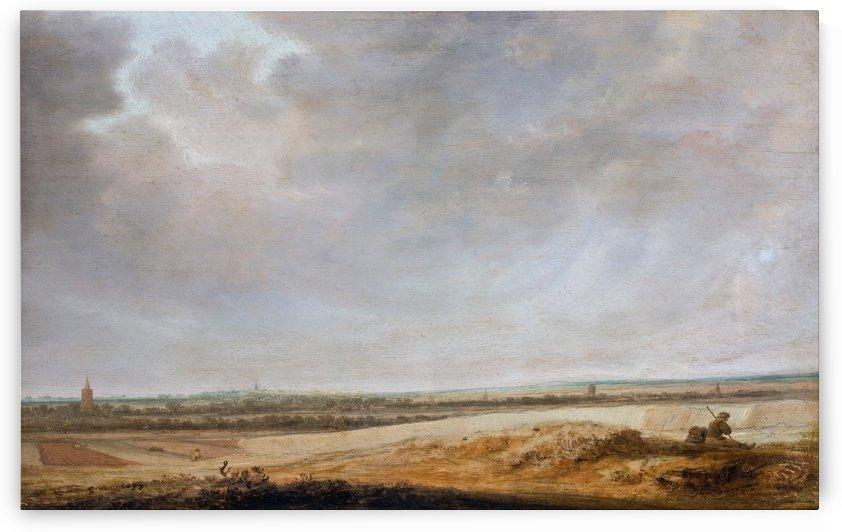 Landscape with Cornfields by Salomon van Ruysdael