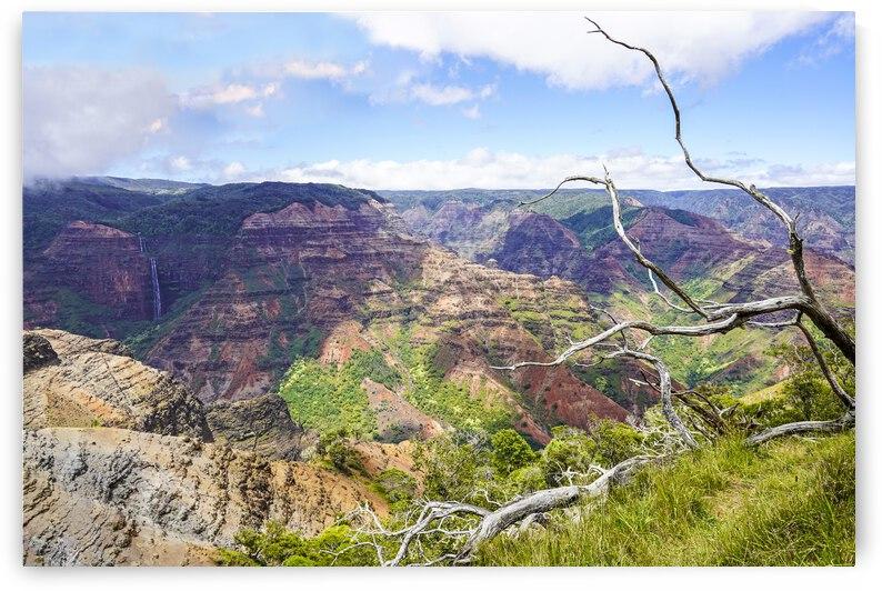 Waimea Canyon Kauai 1 of 3 by 360 Studios