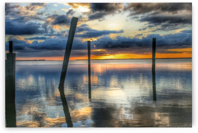 Captiva Collection - 03 by Digitalu Photography