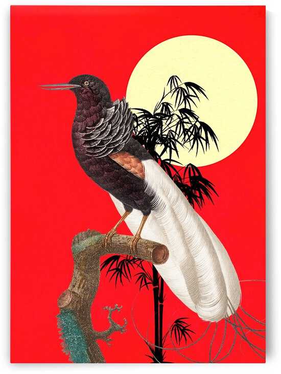 Exotic Bird by Ashira Designs