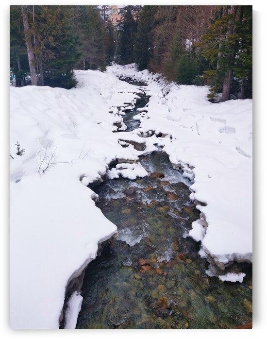 Snowy Creek by JulesSnow