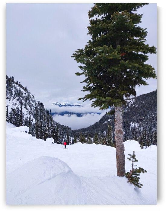 Ski Mountain by JulesSnow