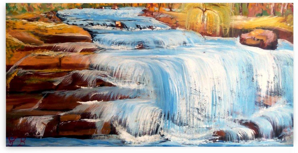 Carpatian cascade    by Budai George