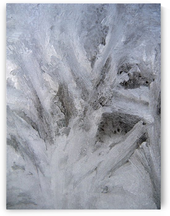 Abstract of Ice by Rhonda M Barrett