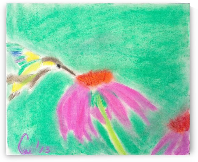 Hummingbird by Crystal Wacoche