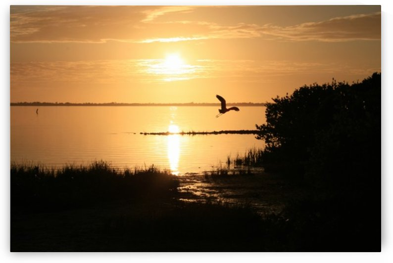 Island Sound - 1 by Digitalu Photography