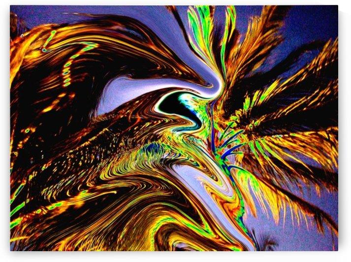 Swaying Palms by Scott Hryciuk