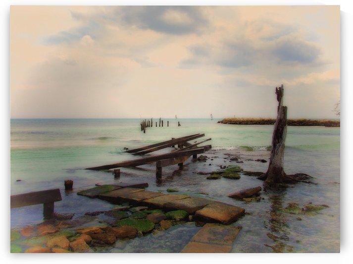 Stepping Stones by Scott Hryciuk
