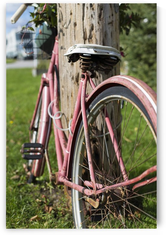 Bicycle by katie tremblay