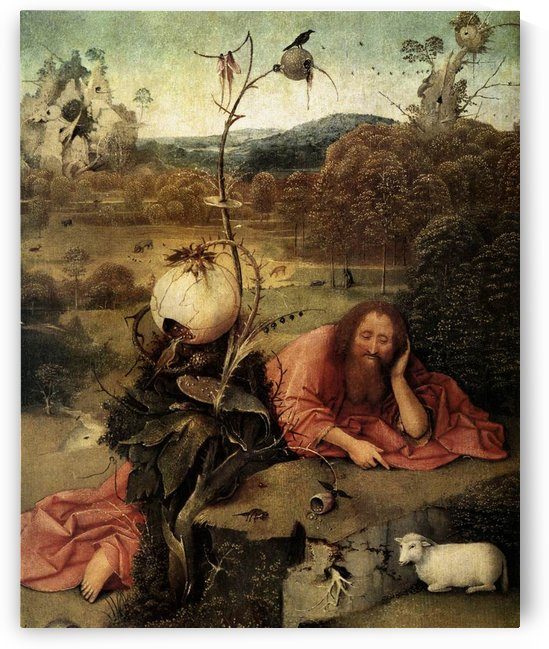 John the Baptist in the Wilderness by Hieronymus Bosch